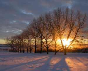 With winter comes the opportunity to make a fresh start